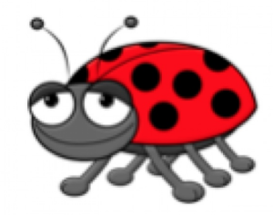Beetle Drive and Supper @ St Mary's Parish Centre