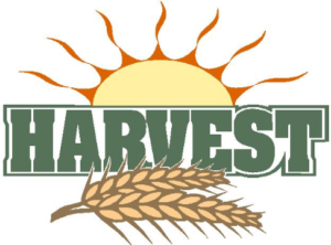 Harvest Children's Activity Day @ St Mary's Parish Centre